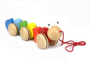 Pull-along Toys
