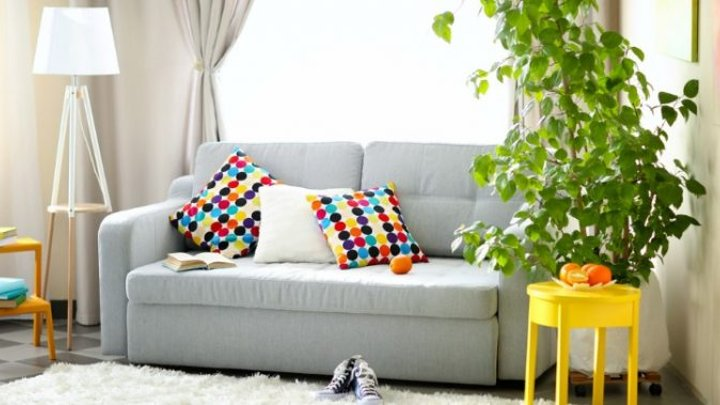 How To Clean Your Couch Without A Steam Cleaner Starts At 60