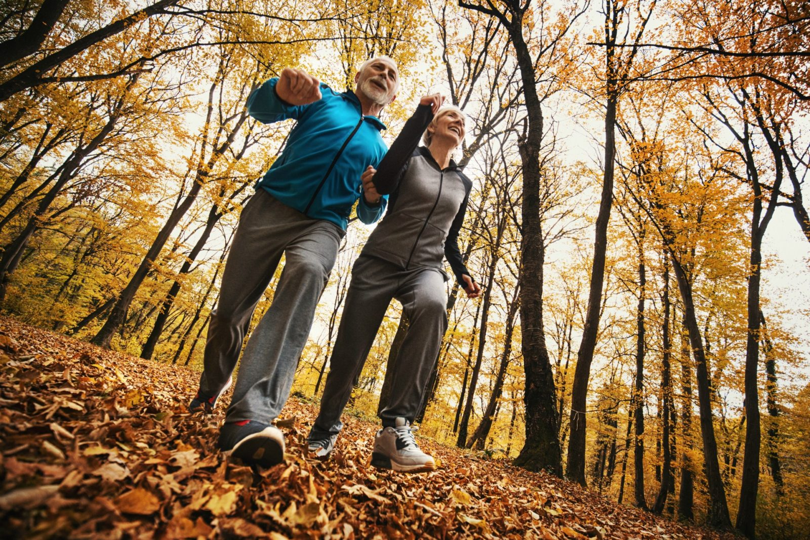 Brisk walking is an example of a good exercise for bone health.