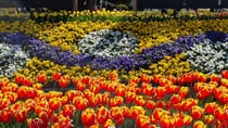 The magic of Mary Poppins will combine with some supercalifragilisticexpialidocious floral colour when Tulip Time begins at Corbett Gardens in Bowral. Source: Ian Smith