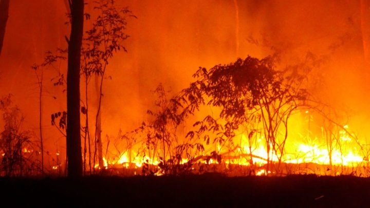 Insurers have already received about 450 claims from NSW and Queensland since the fires broke out last week. Source: Getty