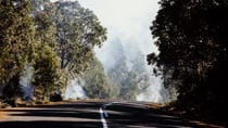 Stay safe on the roads by following these tips this bushfire season. Source: Getty