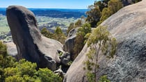 There are 22 marked trails at Tidbinbilla – ranging from a 15-minute walk to full day hikes. Ian took the Gibraltar Peak Trail. Source: Ian Smith