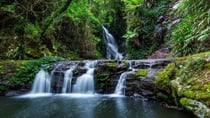 Elabana Falls in Lamington National Park is just one of the many natural treasures tucked away in the Gold Coast hinterland, waiting to be discovered.