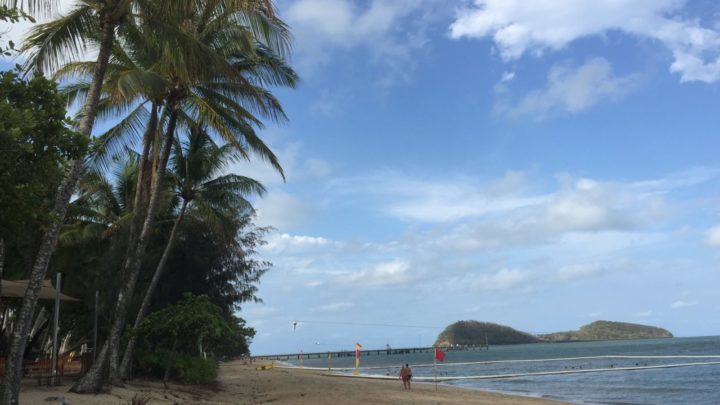 travel to palm cove