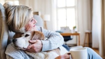 Pets have provided unending support for Aussies during the coronavirus. Source: Getty