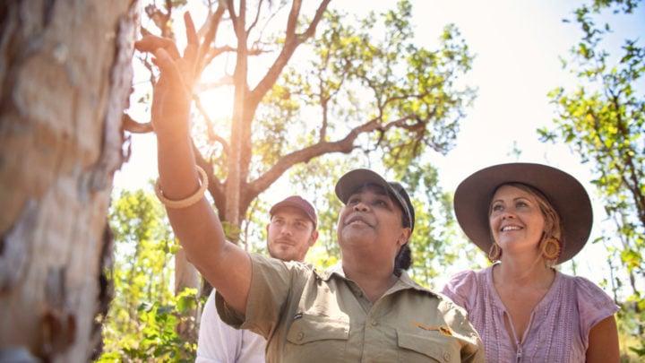Kakadu National Park is a highlight of the region.