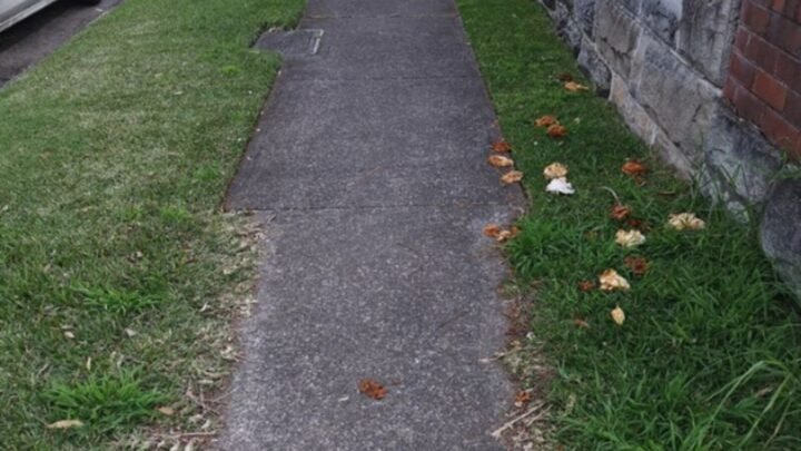 A photo of a nature strip half mowed has left social media furious. Source: Willoughby Living/Facebook.