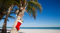Many Aussies are planning to holiday near home this festive season after months in self-isolation due to the outbreak of the coronavirus. Source: Getty
