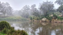 The magical mist at Wingecarribee River. Source: Ian Smith
