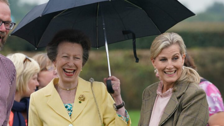 Princess Anne and Sophie Wessex united for a royal engagement on Thursday. Source: Getty